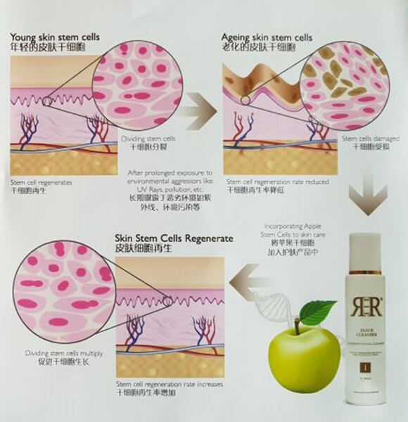 How R3R Cleanser works?